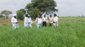 Dr. Kamboj with farmers in Haryana