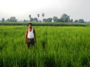Mr. Rajiv Ranjan Singh of Sekhpura from Fatua village in his DSR field